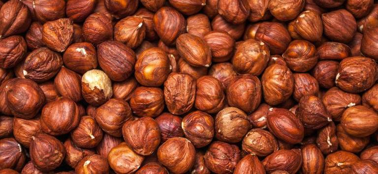 hazelnuts (Agriculture Sustainable Nuts)